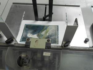 Die ungeschnittenen Illustrationsseiten © Druckerei